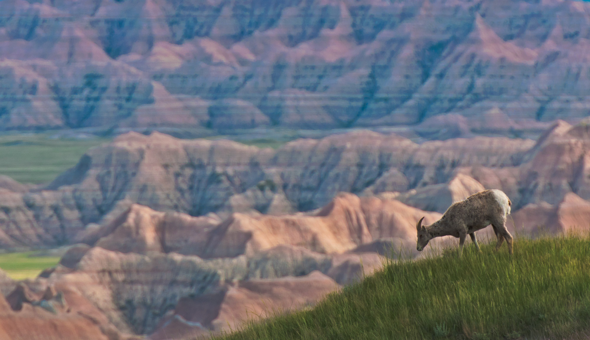 the badlands national park a monument of south dakota Badlands national park does not offer reservations through recreationgov please take a look at the area details below for more information about visiting this location enjoy your visit badlands national park is located 75 miles east of rapid city, south dakota physical addresses for gps park.